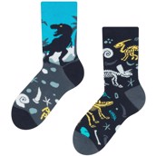 Good Mood kids socks - DINOSAURS