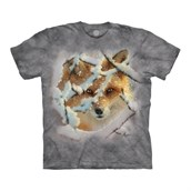 Hide & Seek Fox t-shirt
