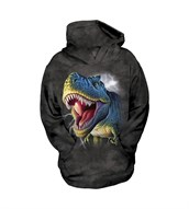 Lightning Rex child hoodie